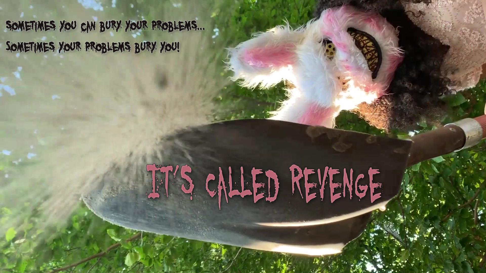 It's Called Revenge